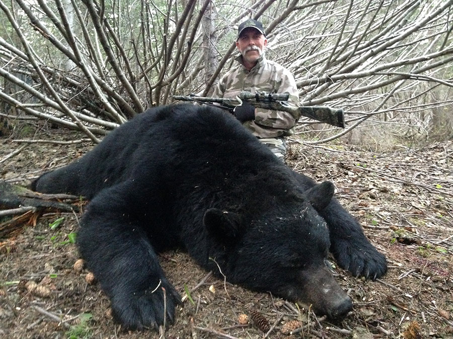 black-bear-hunting-video-and